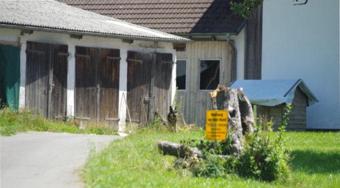 Neonazis auf dem Lande: Braune Flecken in der Allgäuer Ökoszene