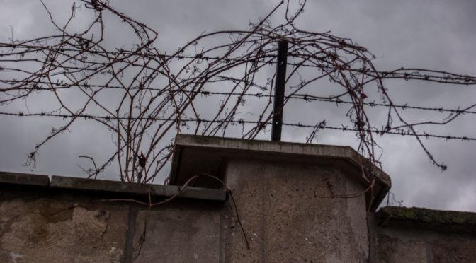 AfD-Anhänger wegen Volksverhetzung in KZ-Gedenkstätte angeklagt