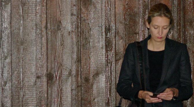 Spendenaffäre um Alice Weidel und die AfD am Bodensee