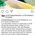 Das Weingut »Hornstein am See« distanziert sich von den AfD-Aktivitäten am Weingut von Peter Hornstein. (Screenshot Instagram)
