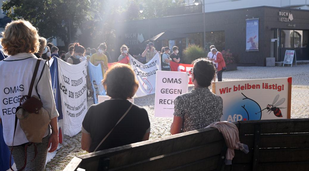 »Wir bleiben lästig«: Seit Jahren demonstrieren AfD-Gegner*innen im Allgäu unermüdlich gegen Auftritte der Rechtsaußenpartei. (Photo: Lena Reiner)